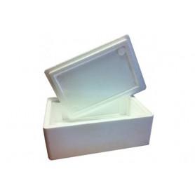 Caja 50x40x30cm isotérmica con tapa y caja carton