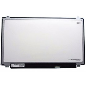 Pantalla LCD Medion Erazer MD99873