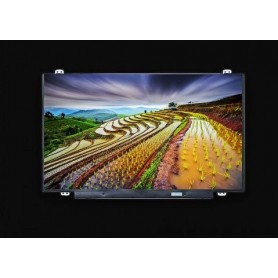 Pantalla LCD Asus X555L