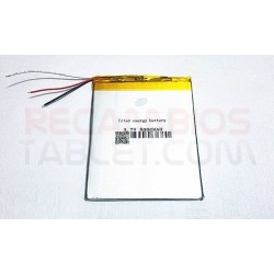 Batería Ereader Ebook Tagus Lux 2015
