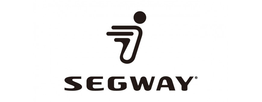 CARGADORES SEGWAY